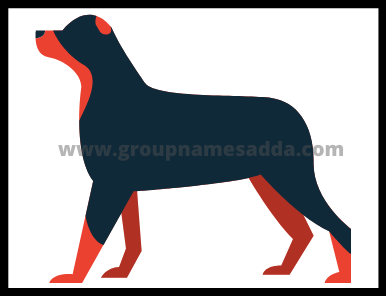 Beagle name ideas