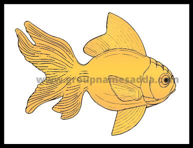Best Goldfish Names Ideas