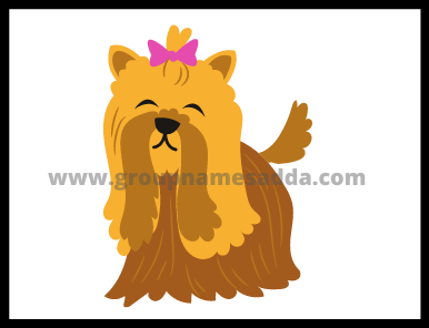 Poodle Name
